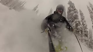 PowPow in Revelstoke Forests - 6years ago