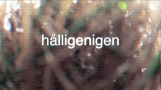 Hålligenigen - 8år sedan