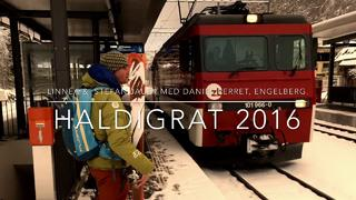 Haldigrat 2016 Wait for it!!! - 1år sedan